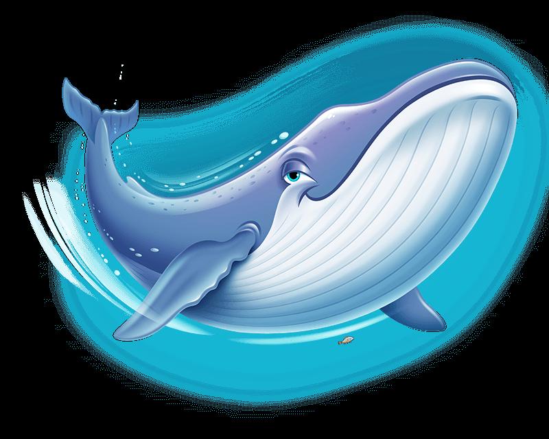Blue-Whale_Hydro